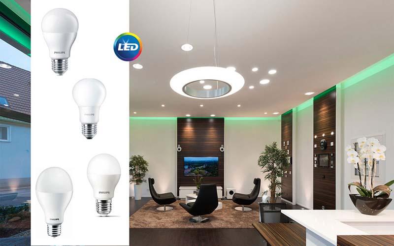 Заложете на ниски разходи с PHILIPS LED лампи
